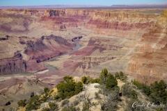 20111018-arizona-07