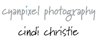 cyanpixel photography