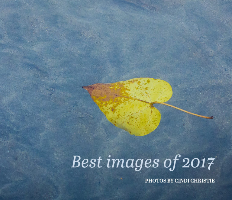 Best of 2017 photo book